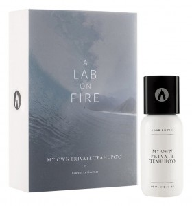 A Lab On Fire My Own Private Teahupo`o
